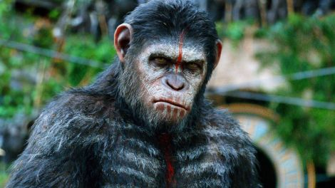 Dawn-of-The-Planet-of-The-Apes-DOTPOTA-Wallpaper
